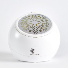 Fan Diffuser for Essential Oils